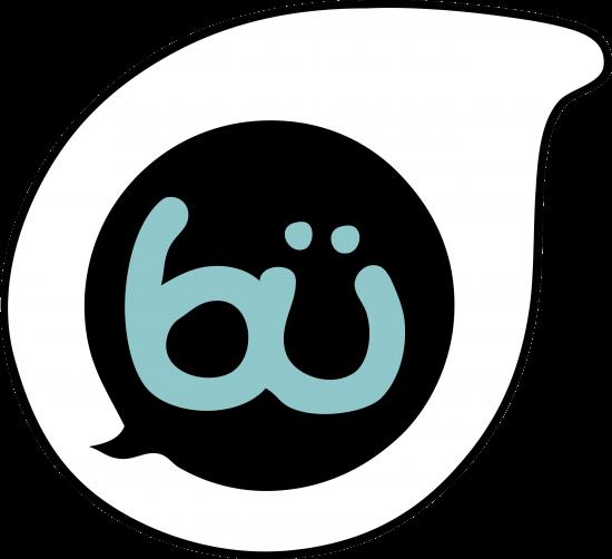 New Bü DIY Toys from Canada's Crywolf