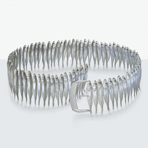 Belt made of anchovies  Fulvio Bonavia
