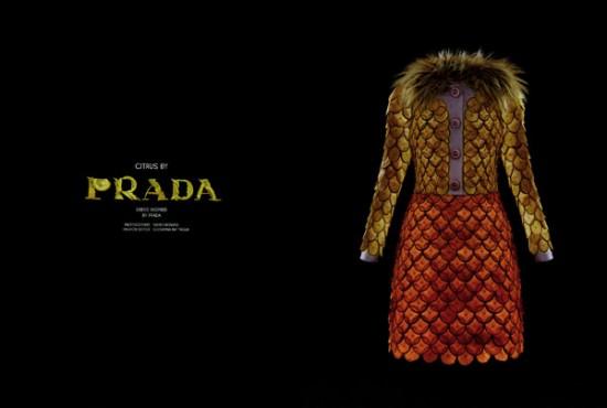Citrus by Prada