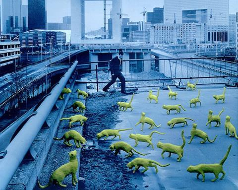 Cats in Paris colorful art