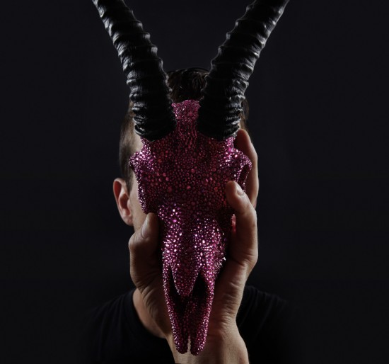 Swarovski Crystal Taxidermy Skulls by Peter Pracilio