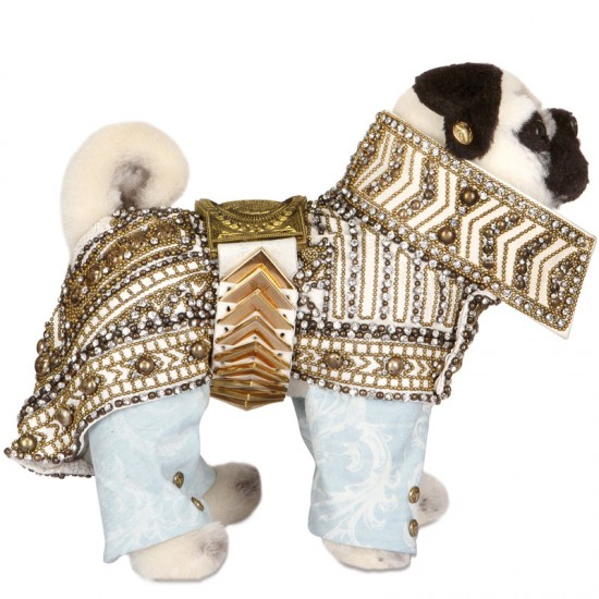 Balmain pug dog