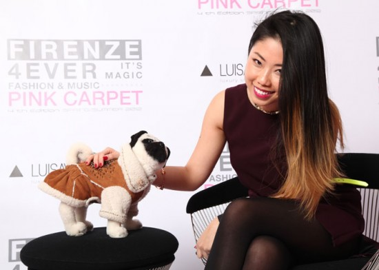 Roberto Cavalli Pug adopted by Fashion Snoops
