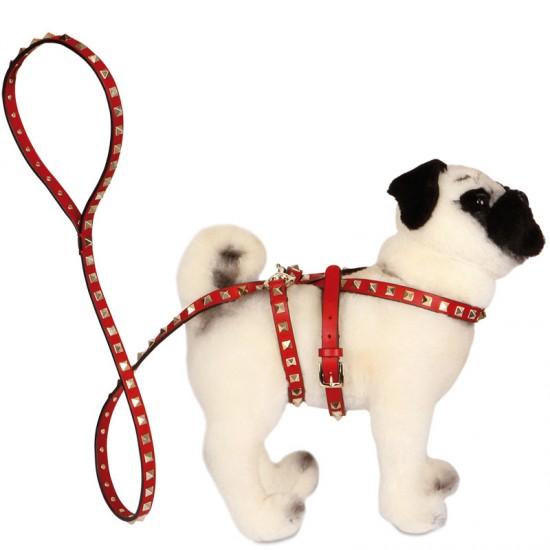 Valentino pug dog