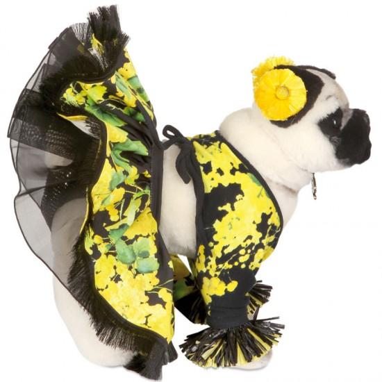 Blumarine pug dog