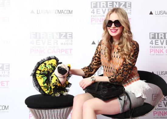 Blumarine Pug adopted by Fashion Squad
