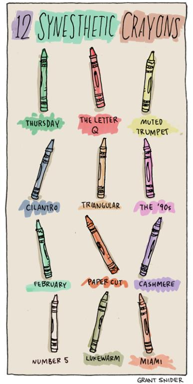 Synesthetic Crayons by Grant Snider