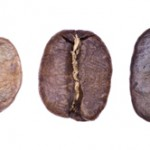 Phases of Coffee Roasting by William Le Goullon
