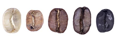 Phases of Coffee Roasting (coffee photos) by William Le Goullon