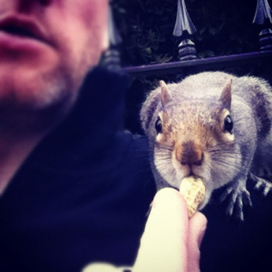 @mynameisdelme making friends with squirrels in the UK