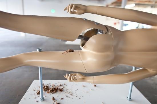 Nutcrackers by Jennifer Rubell