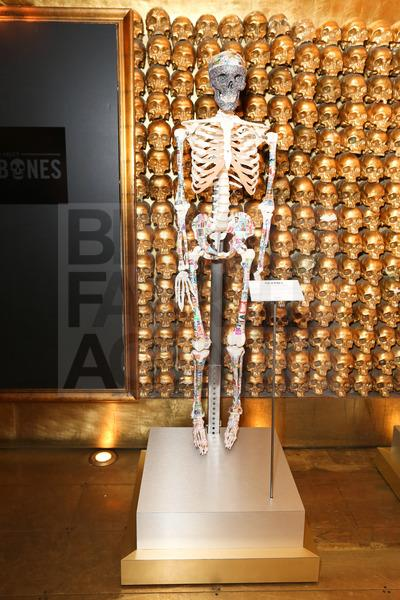 Kiehl's Mr. Bones customized skeletons by Zach Galifianakis