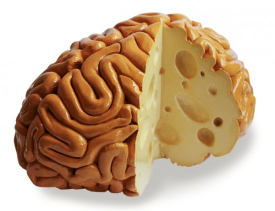 Maasdammer cheese brain food art by Sarah Asnaghi