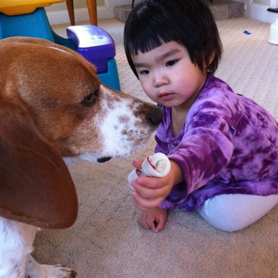 """I think she's giving """"Warm Regards"""" to the dog. Photo by @kawsstudio."""