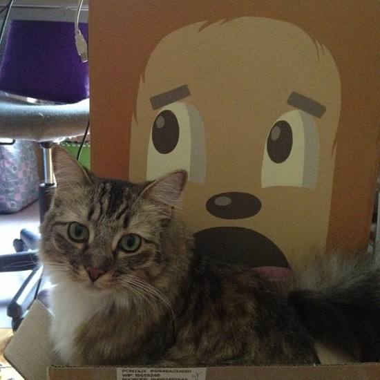 When you live with @thinkspace_art, you get to curate your box. Here's Otter with @dabsmyla.