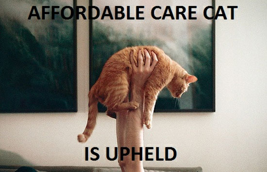 Affordable Care Cat is Upheld
