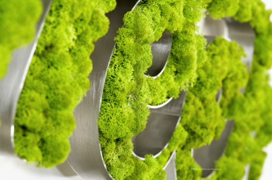 Molded Moss Sculptures by Vegetal Identity