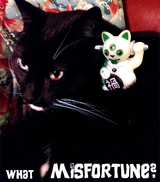 Nigelcat and Jeremycat