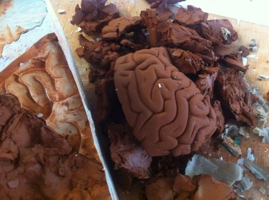 Skull Brain by Emilio Garcia