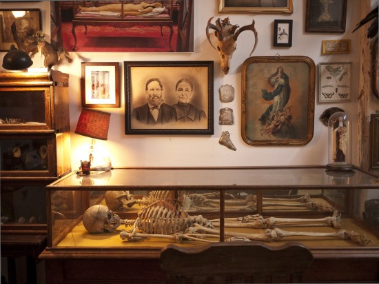Morbid Anatomy Library