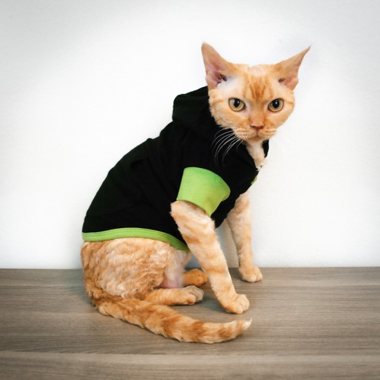 Cat-toure cat hoodie