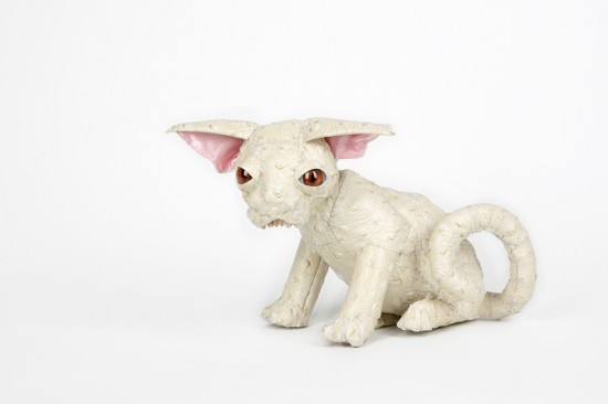 Hairless Kitten by Jaz Harold