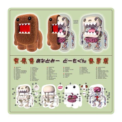 Domo Anatomy by Jason Freeny