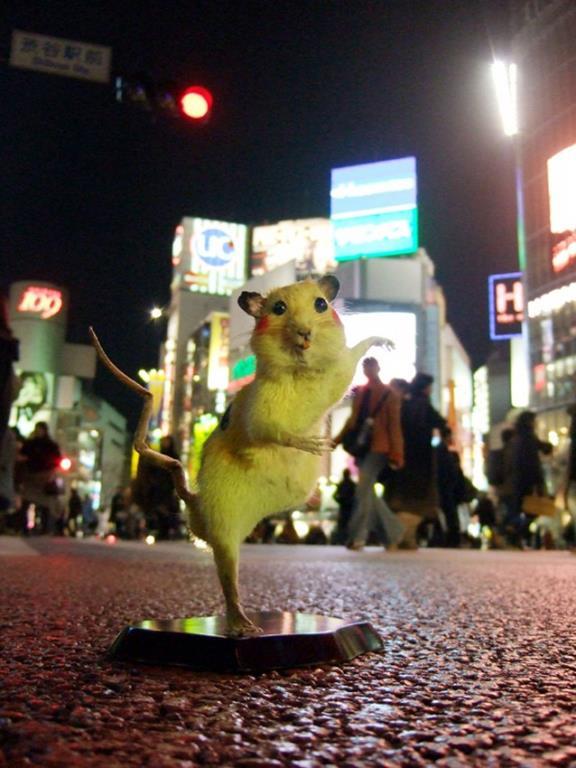 Pikachu by Chimpom