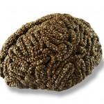 Culinary Alchemy Hemp Seed Brain by Sara Asnaghi