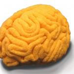 Culinary Alchemy Polenta Brain by Sara Asnaghi