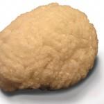 Culinary Alchemy Salt Brain by Sara Asnaghi