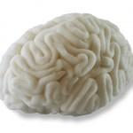 Culinary Alchemy Sugar Brain by Sara Asnaghi