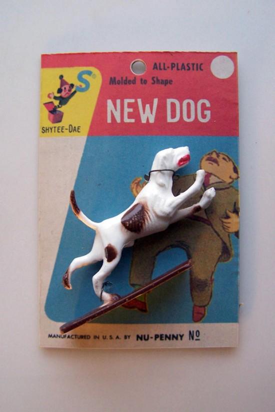 New Dog by Shytee Dae © Randy Regier