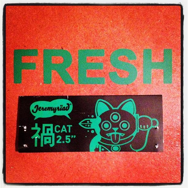 Jeremyriad x FERG Misfortune Cat