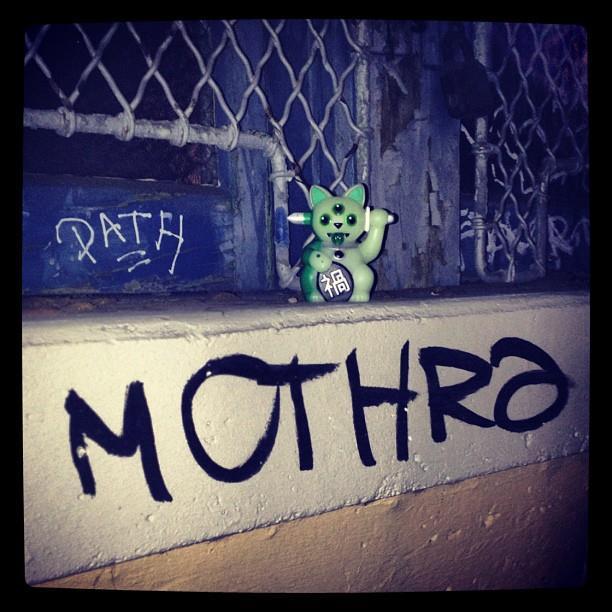 Mothra x Jeremycat Misfortune Cat